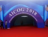 AICOG-2018-5
