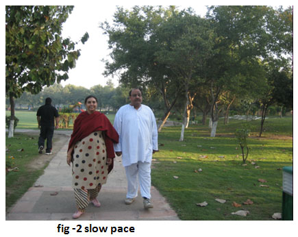 fig2_slow_pace